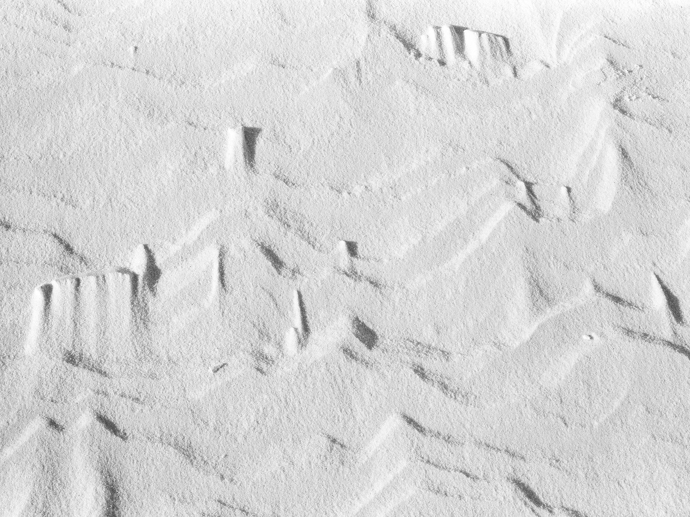 Sand Patterns, Whitesands